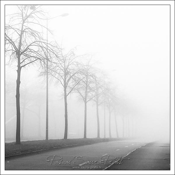 Brouillard à Rouen