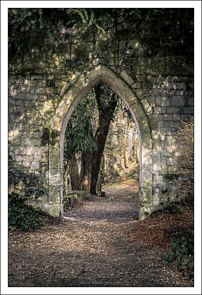 Dans les allées de l'abbaye Saint-Wandrille de Fontenelle