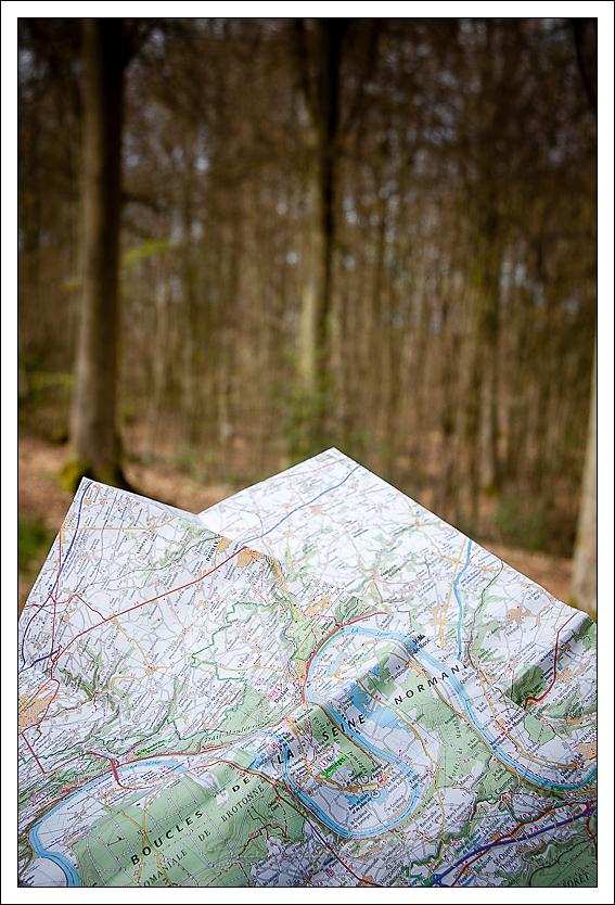 Forêt domaniale de Brotonne