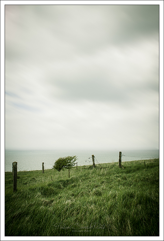 Mers-les-Bains, sentier du littoral