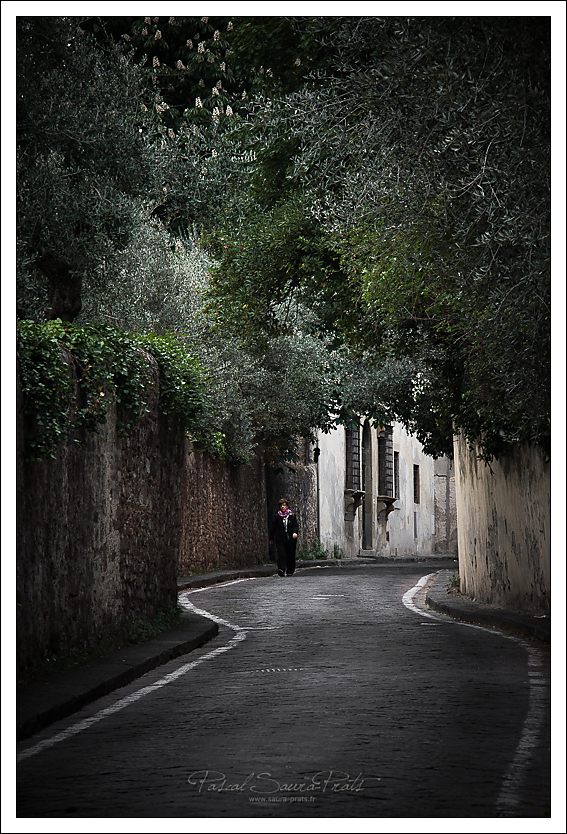 55 via di san leonardo, Firenze