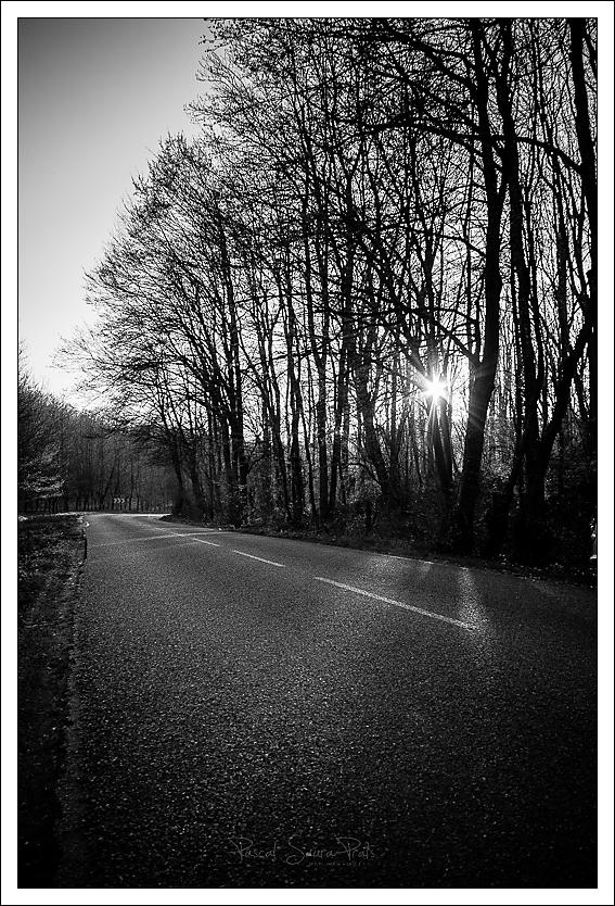 D47, Chemin de la maison margot