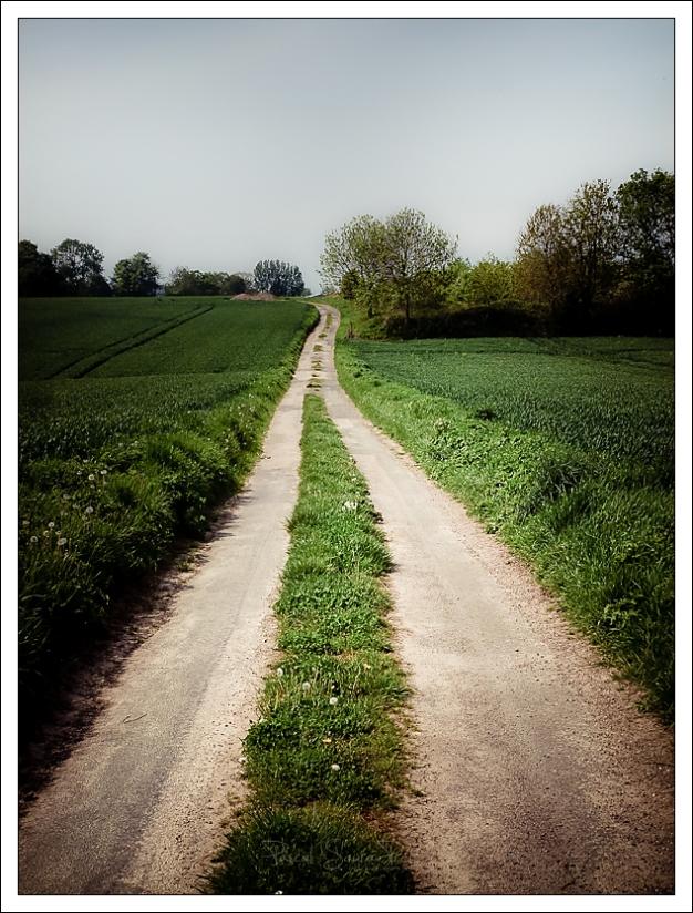 chemin du saloir, Ardouval