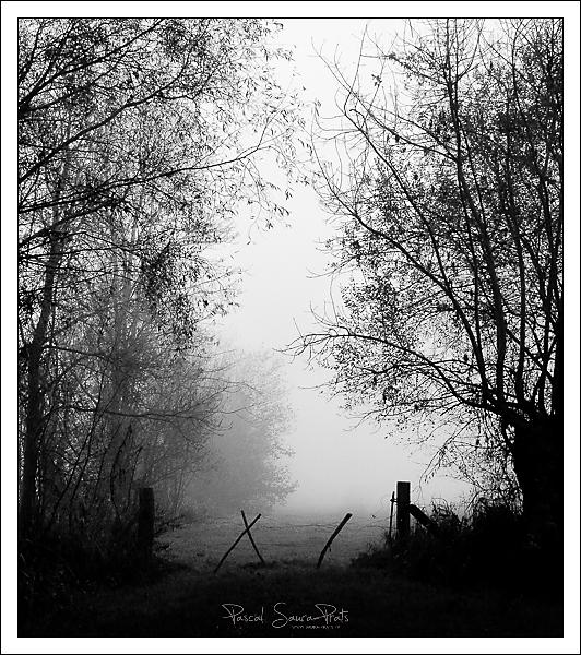 randonnée saint martin de boscherville